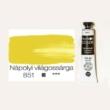 Pannoncolor olajfesték nápolyi világossárga 851 22 ml