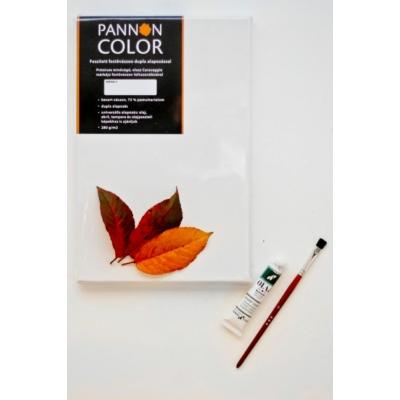 Feszített festővászon Pannoncolor 100x100 2x4