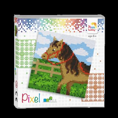 Pixel szett 4 alaplapos ló 12x12 cm (4 alaplap+20 szín)