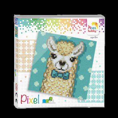 Pixel szett 4 alaplapos alpaka 12x12 cm (4 alaplap+20 szín)